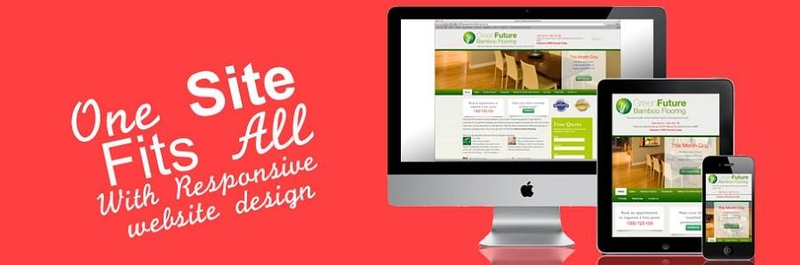 Responsive Mobile Website Development Delhi
