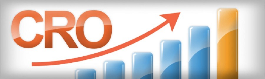 Conversion Rate Optimization Services Delhi