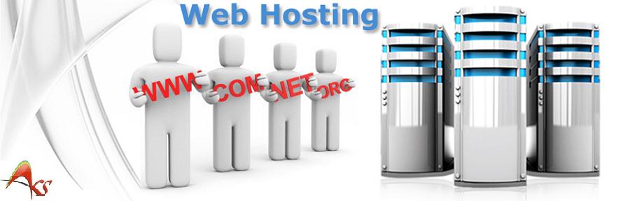 Website Hosting Services Delhi